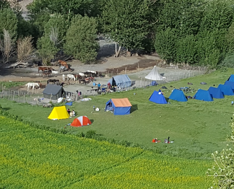 Markha Valley Camp site